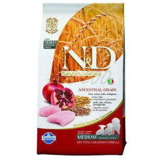 Farmina N&D dog LG PUPPY MEDIUM Chicken & Pomegranate 12kg