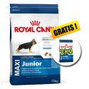 ROYAL CANIN MAXI JUNIOR 13 + 2 kg INGYEN