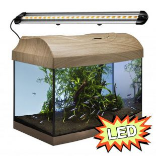 Akvárium STARTUP 40 LED Extra 2x4,3W - ÍVES - BÜKK