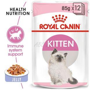 Royal Canin KITTEN Instinctive in Jelly 85 g - zselé alutasakban
