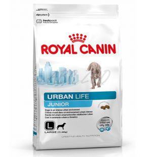 ROYAL CANIN URBAN LIFE JUNIOR LARGE DOG 9kg