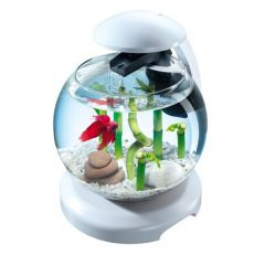 Akvárium kárász vagy halrcoshal számára, fehér - gömb 6,8 liter