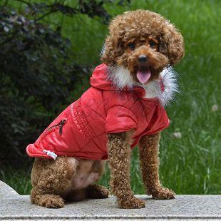 Kutyabunda cipzáros zseb imitációval - piros, XL