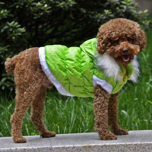 Kutyabunda lecsatolható kapucnival - zöld, XL