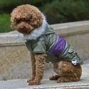 Kutyabunda felvarróval - zöld, XL