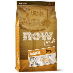 Petcurean NOW FRESH Grain Free ADULT - 11,33kg