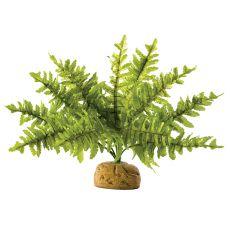 Exo Terra terráriumi növény - Boston Fern Small, 20cm