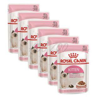 Royal Canin KITTEN Instinctive 6 x 85g alutasak
