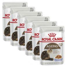 Royal Canin AGEING +12 alutasak 6 x 85g