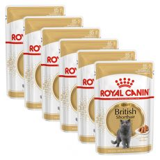 Royal Canin British Shorthair - alutasak, 6 x 85g