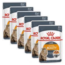 Royal Canin Intense BEAUTY in Jelly 6 x 85g - zselé alutasakban