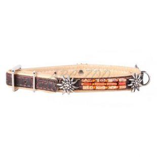 Díszített bőr nyakörv- 30 - 39cm, 20mm - barna-bézs