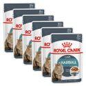 Royal Canin HAIRBALL CARE - tasak 6 x 85g