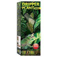Exo Terra Dripper Plant Small - terráriumi növény