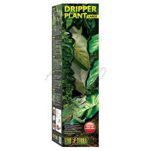 Exo Terra Dripper Plant Large - terráriumi növény