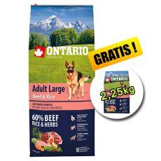 ONTARIO Adult Large Beef & Rice 12 kg + 2,25 kg ajándék