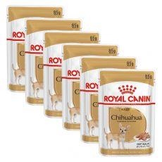 ROYAL CANIN ADULT CSIVAVA 6 x 85 g - alutasak