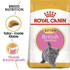 Royal Canin British Shorthair Kitten 400g