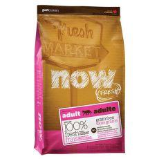 Petcurean NOW FRESH Grain Free ADULT CAT - 7,26kg