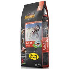 BELCANDO Adult Power 12 + 3kg GRÁTISZ