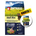 ONTARIO Adult Mini Lamb & Rice 6,5kg + 0,75kg