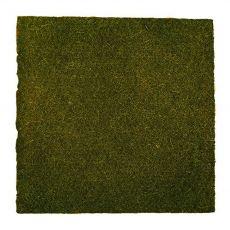 Kókuszháttér terráriumokhoz - 50 x 50 cm
