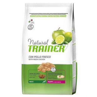 Trainer Natural Puppy Maxi, csirke12kg