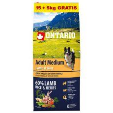 ONTARIO Adult Medium Lamb & Rice 15+5kg ajándék