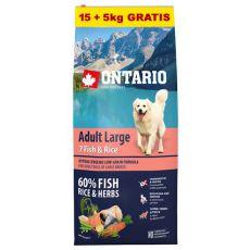 ONTARIO Adult Large 7 Fish & Rice 15+5kg GRÁTISZ