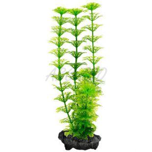 Tetra Ambulia műnövény, S - 15cm