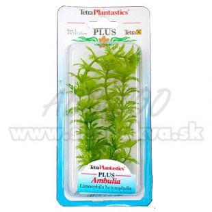 Limnophila sessiliflora ( Ambulia) - növény Tetra 15 cm