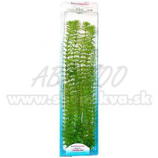 Limnophila sessiliflora ( Ambulia) növény - Tetra 46 cm