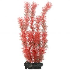 Myriophyllum heterophyllum (Red Foxtail) - növény Tetra 30 cm, L