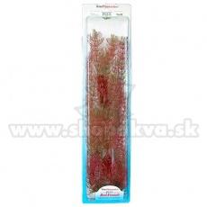 Myriophyllum heterophyllum (Red Foxtail) - műnövény Tetra 38 cm, XL