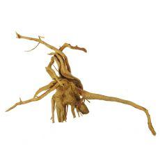 Akváriumi fagyökér - Cuckoo Root - 35 x 11 x 21 cm