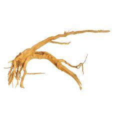 Akváriumi fagyökér - Cuckoo Root - 32 x 20 x 10 cm
