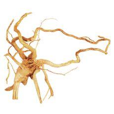 Akváriumi fagyökér - Cuckoo Root - 28 x 15 x 20 cm