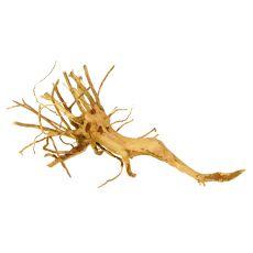 Akváriumi fagyökér - Cuckoo Root - 31 x 16 x 9 cm