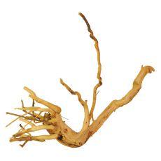 Akváriumi fagyökér - Cuckoo Root - 25 x 17 x 11 cm