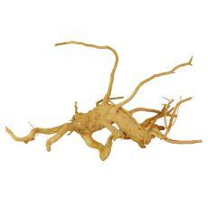 Akváriumi fagyökér - Cuckoo Root - 30 x 13 x 16 cm
