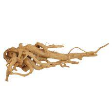 Akváriumi fagyökér - Cuckoo Root - 56 x 32 x 16 cm