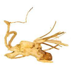 Akváriumi fagyökér - Cuckoo Root - 18 x 7 x 8 cm