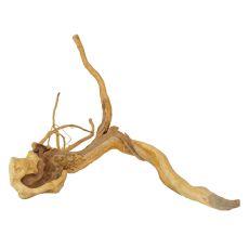 Akváriumi fagyökér - Cuckoo Root - 45 x 40 x 28 cm