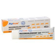 APTUS krém - RECONVALESCENT CAT 60 g