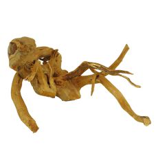 Akváriumi fagyökér - Cuckoo Root - 41 x 57 x 27 cm