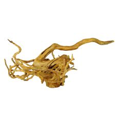 Akváriumi fagyökér - Cuckoo Root - 65 x 36 x 25 cm