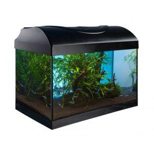 DIVERSA STARTUP SET 40 akvárium - EGYENES - FEKETE