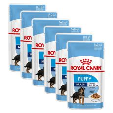 Royal Canin Maxi Puppy alutasak 6 x 140 g
