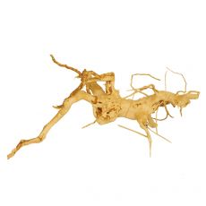 Akváriumi fagyökér - Cuckoo Root -  20 x 20 x 20 cm