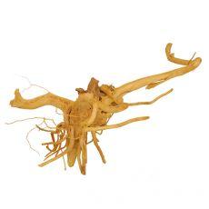 Akváriumi fagyökér - Cuckoo Root - 36 x 29 x 15 cm
